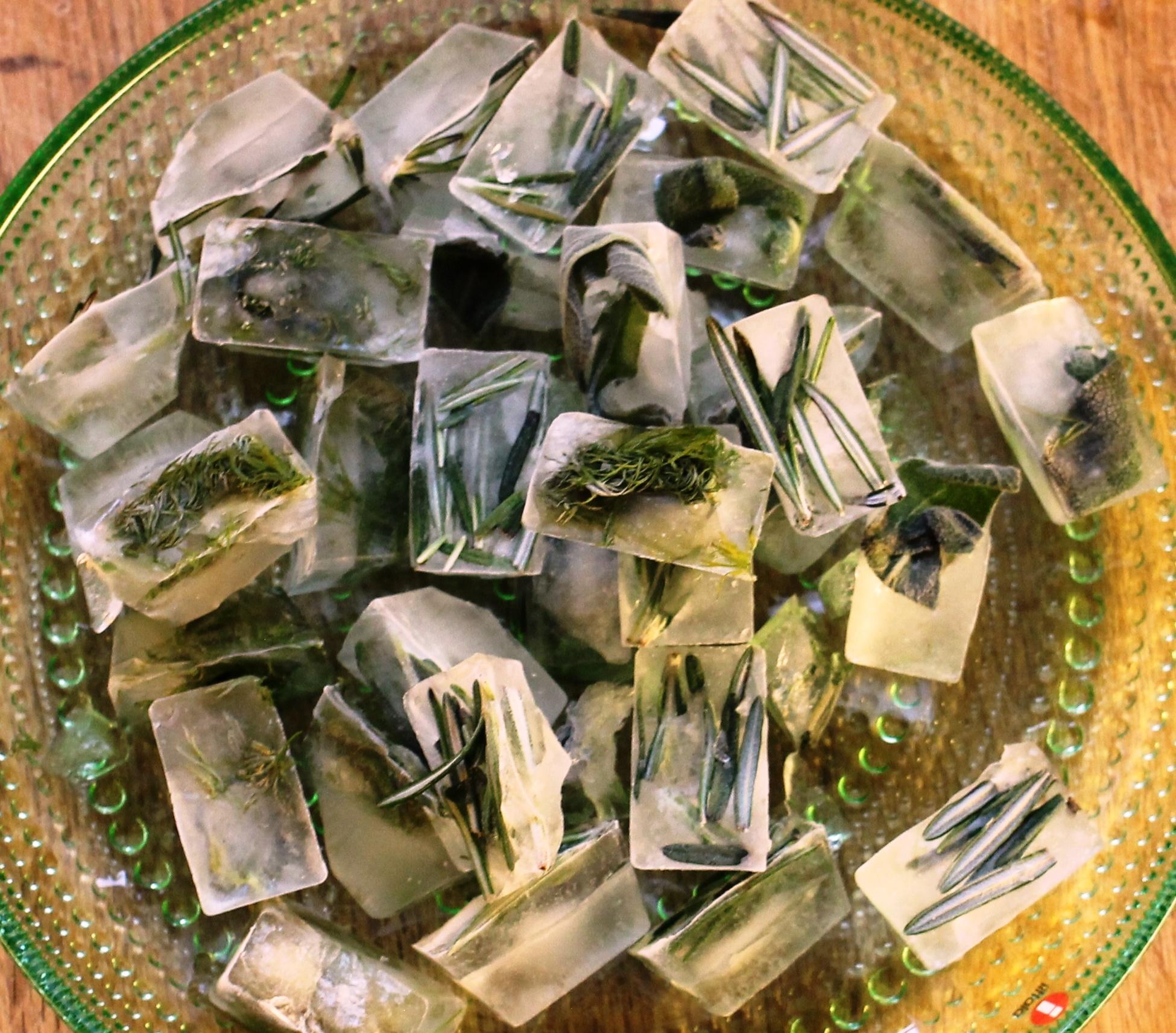 Uppskera – Frysting kryddjurta